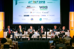 Towards a Clean & Resilient Grid Panel